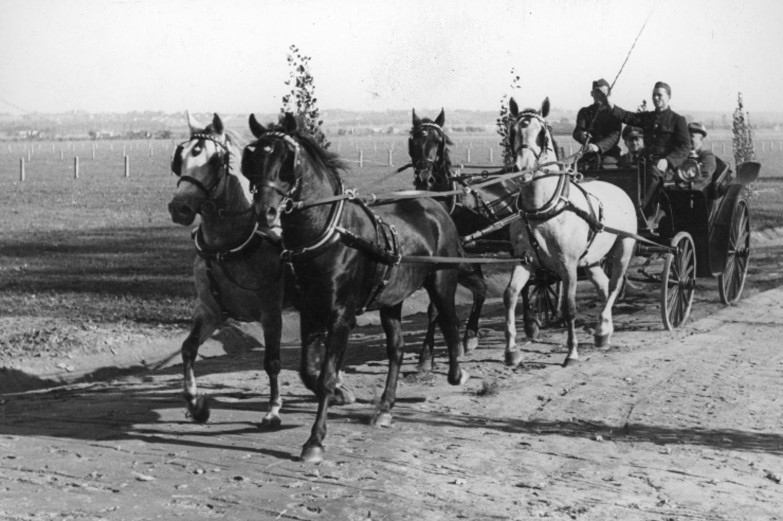 Gubernator Hans Frank na przejażdżce zaprzęgiem ze stadniny koni w Klikowej (1942 r