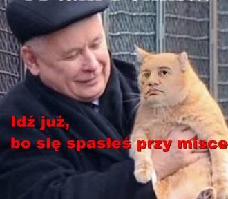 Zbigniew Ziobro musi odejść z rządu. Zobacz memy internautów