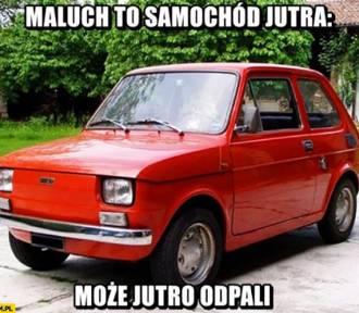 Mały Fiat przetrwa jeszcze tysiąc lat MEMY. Urodziny Malucha