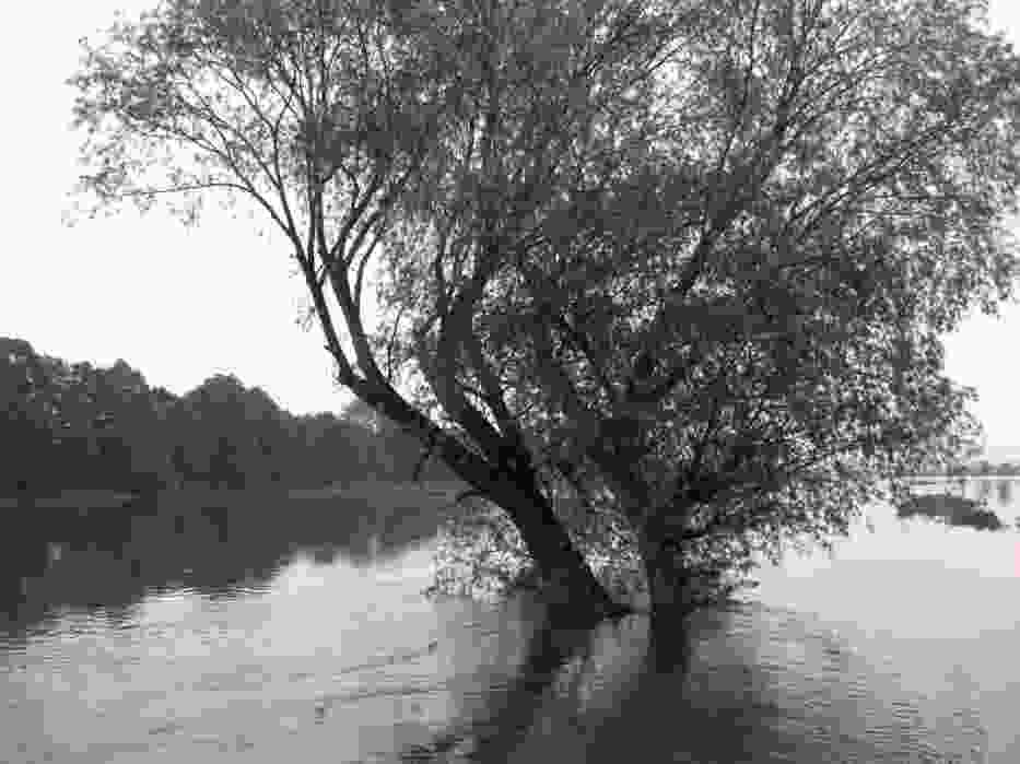 Zdjęcie ilustracyjne   Ulica Wygoda w Kutnie całkowicie pod wodą