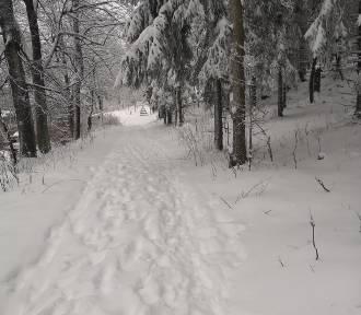 W Karkonoszach mnóstwo śniegu i fanów sportów zimowych [ZDJĘCIA]