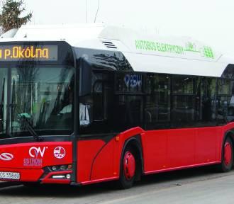 W sierpniu do Ostrowa  przyjadą kolejne autobusy elektryczne