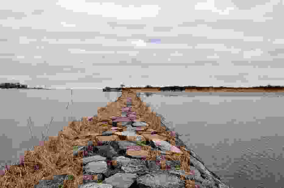 Wisła Śmiała o długości 2,5 km uchodzi do Zatoki Gdańskiej