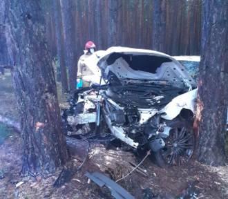 Wypadek na trasie Nowy Tomyśl - Zbąszyń. BMW roztrzaskało się na drzewie [FOTO]