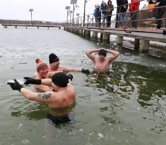 Morsy ze Skwierzyny i Międzyrzecza kochają lodowatą wodę