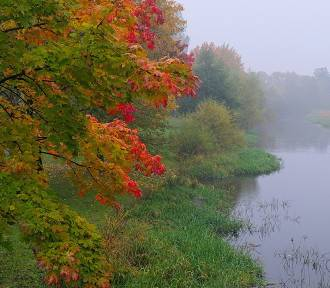 Wspólnie sprzątamy rzeki i okolice