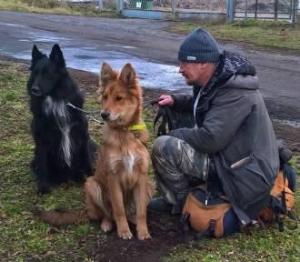 Dolny Śląsk. Pokonał 2000 km, by odnaleźć swojego psa! Wzruszająca historia przyjaźni człowieka