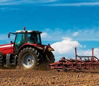150 tys. zł premii dla młodych rolników – ARiMR przyjmuje wnioski