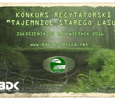 Konkurs Recytatorski Tajemnice Starego Lasu Bdk Brodnicki