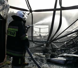 Sąd: Prokurent firmy składującej odpady w Zelowie przyczynił się do pożaru