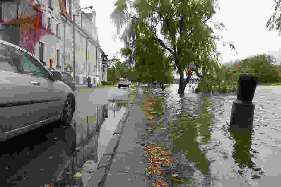 Rzeka Elbląg wylewa