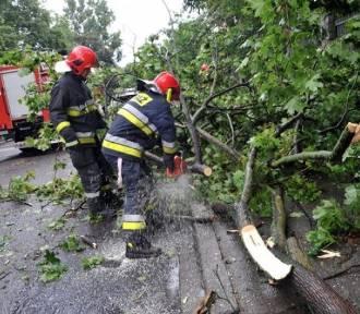 Strażacy walczą ze skutkami burz w Wielkopolsce