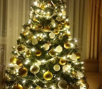 Choinki i świąteczne stroiki w naszych domach. Zobaczcie zdjęcia Czytelników (GALERIA)