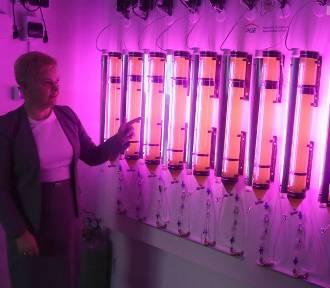 Laboratorium Odnawialnych Źródeł Energii powstało na ZUT [ZDJĘCIA, WIDEO]