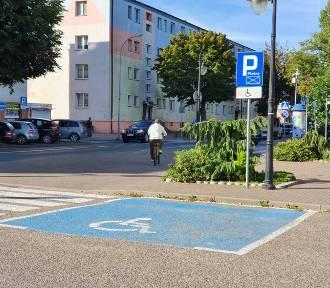 Parkingi w Pucku: kontrowersje wokół opłat parkingowych dla niepełnosprawnych | SONDA