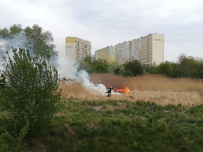 Pożar na osiedlu Rąbin w Inowrocławiu [zdjęcia]