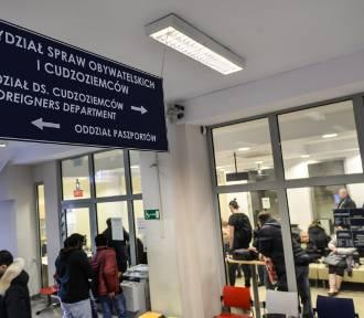 Rośnie liczba zezwoleń na pracę dla Ukraińców na Pomorzu