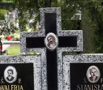 Kolejny atak wandali na cmentarzu w Legnicy [ZDJĘCIA]