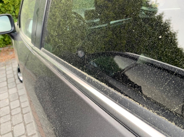 Żółty pył na samochodach - co to takiego?