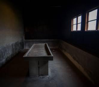 Majdanek w obiektywie. Przejmujące zdjęcia Łukasza Parola