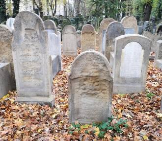 Kraków. Ratują zabytkowe macewy na cmentarzu przy Miodowej