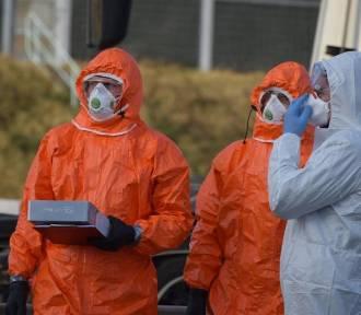 Koronawirus. Najnowsze dane na temat zakażeń w Wielkopolsce [29.05.2020]