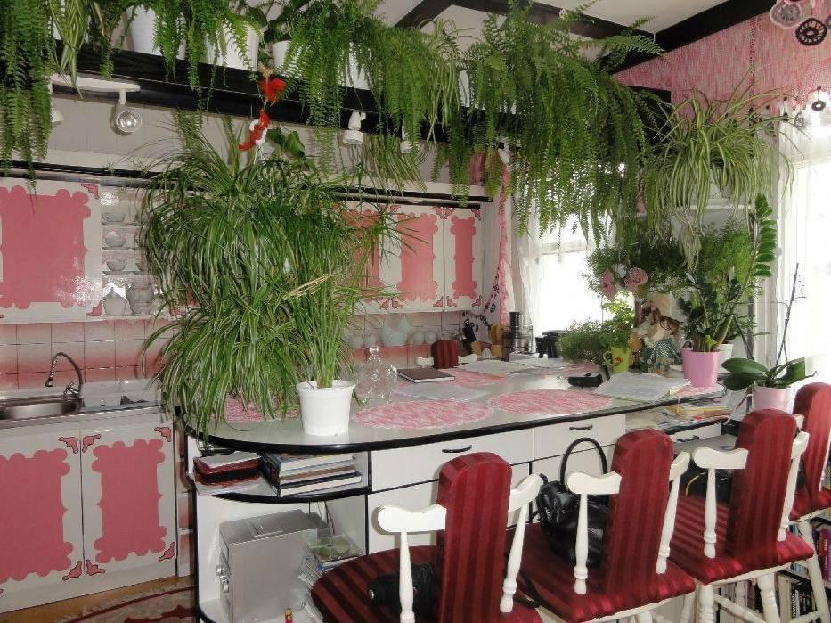 Opublikowane fotografie pochodzą z fanpage'a o najgorszych mieszkaniach do wynajęcia - KLIKNIJ