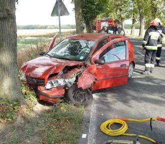 Straż pożarna: to był niebezpieczny tydzień na drogach powiatu świebodzińskiego [zdjęcia]