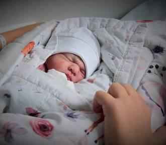 Puckie noworodki: listopad 2019 | ZDJĘCIA