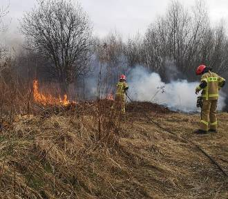 Plaga pożarów w regionie tarnowskim. To efekt wielkanocnego obrzędu
