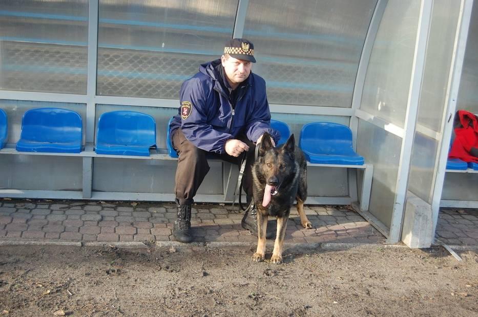 Psy na służbie: ćwiczenia