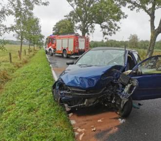Darłowo: Śmiertelny wypadek samochodowy - uderzenie Opla w przydrożne drzewo [ZDJĘCIA]