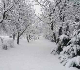 Zima w okolicach Przemyśla [ZDJĘCIA INTERNAUTKI]