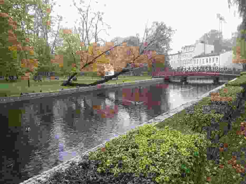 Jesień w parku Majkowskiego w Wejherowie