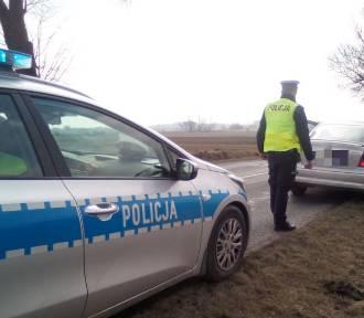 Trzech pijanych kierujących zatrzymanych w powiecie aleksandrowskim. Listopadowy długi weekend