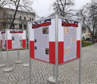 """Wystawa plenerowa """"Konstytucja 3 maja"""" [Foto]"""