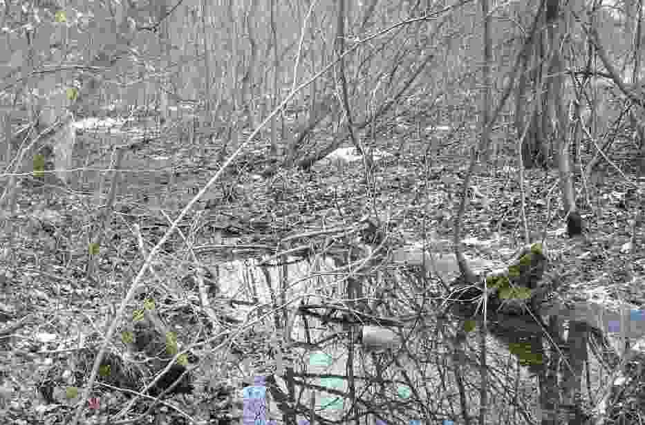 W parku wiejskim w Konarzewie - fetoru pochodzącego od ścieków nie widać