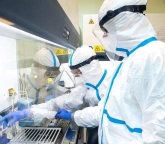 741 nowych zakażeń koronawirusem na Pomorzu! 20 osób zmarło