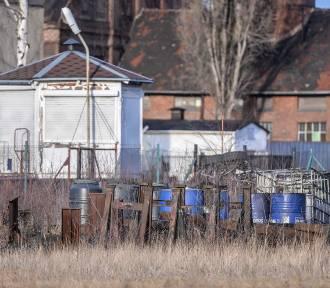 Port Service wywiezie niebezpieczne odpady chemiczne