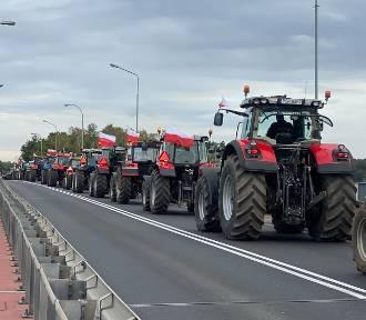 Protesty rolników w Łódzkiem. Agrounia zablokuje drogę