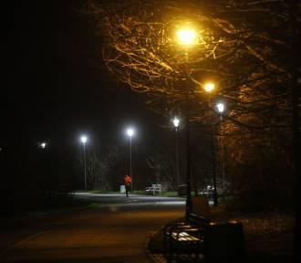 Klimatyczna trasa rowerowa przy Zalewie Rzeszowskim [ZDJĘCIA]