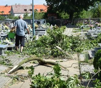 Co z ubezpieczeniem cmentarza i wycinką drzew? Ks. Jacek Zieliński wyjaśnia