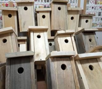 Wodzisław Śl.: Mieszkańcy regionu montują budki lęgowe dla ptaków