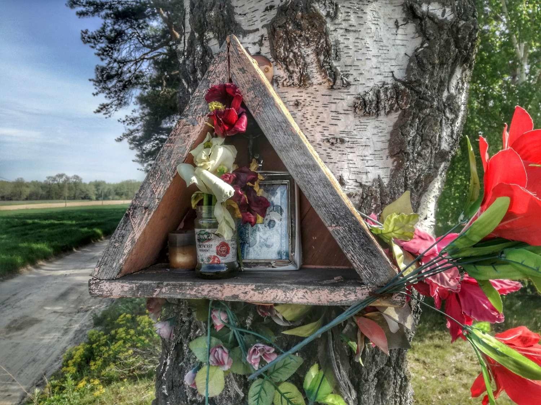 Przydrożne kapliczki i krzyże w Kaliszu i powiecie kaliskim