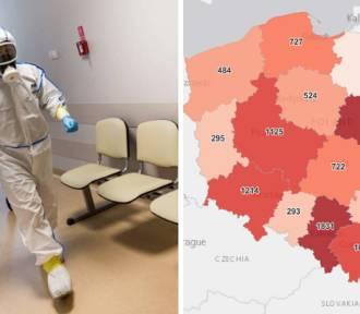 Koronawirus. Najwięcej nowych zakażeń wciąż w woj. Śląskim. Gdzie najwięcej?