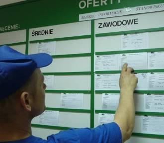 Praca w Lęborku. Nowe oferty zatrudnienia z PUP