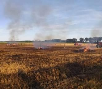Straż pożarna otrzymała zgłoszenie o pożarze 10 hektarów pola