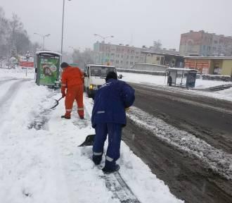 Tęsknicie za śniegiem w Wodzisławiu Śląskim? Zobaczcie zdjęcia