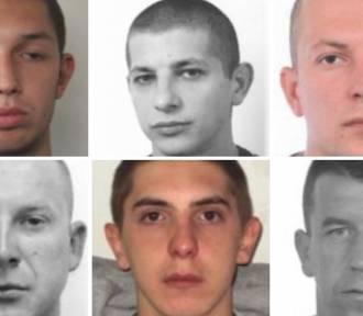 Małopolska. Handlarze narkotyków poszukiwani przez policję