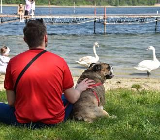 W ciepłą niedzielę chętnie odwiedzamy jezioro w Kuźnicy Zbąskiej